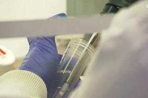 Malati tumore ogni anno spendono 5 mld di tasca propria (ANSA)